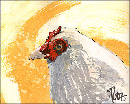 080723ChickenCropped
