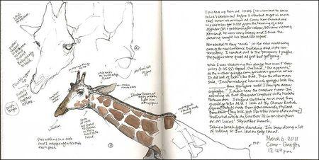 110306DGiraffe