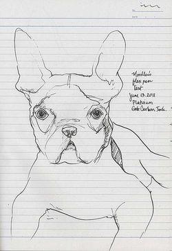 110613BulldogFlexPen