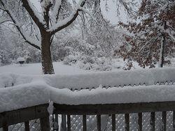 SnowYardBBQ4446