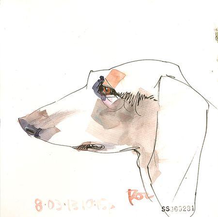 130803_AA_Dog