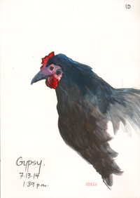 140713_10_Chicken_Gypsy