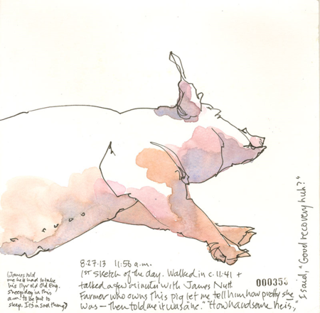 150827_Pig_firstSketch