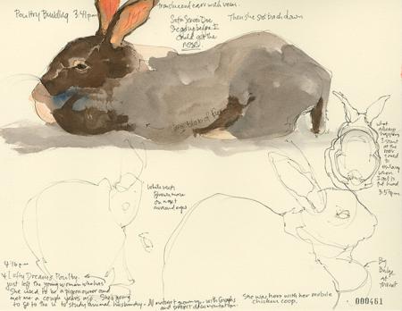 2015MSF_461_bunniesCRAlt