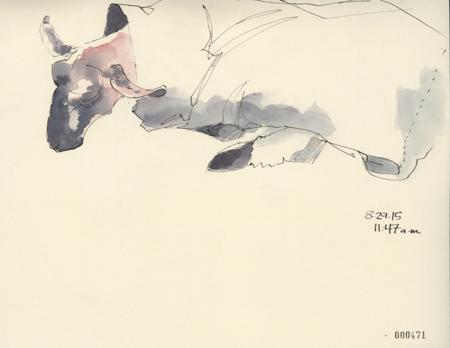 2015MSF_471_sheepCoatCR